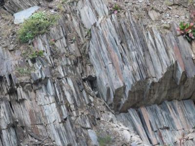 Скальный камень