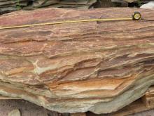 Скала Камень дерева